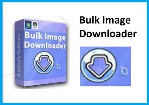 Bulk Image Downloader Crack Torrent With Key 2021
